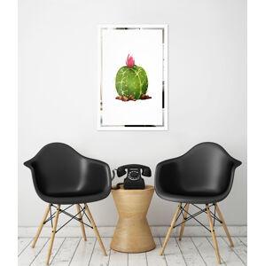 Obraz Kaktus na zrcadle Mirrora 67 - 60x40 cm