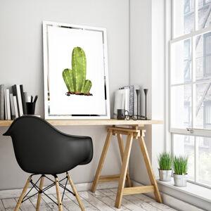 Obraz Kaktus na zrcadle Mirrora 68 - 60x40 cm
