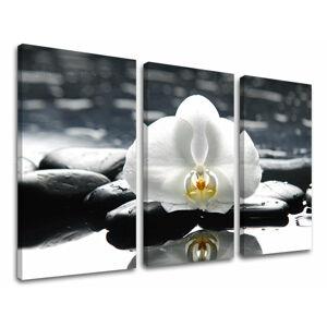 Obraz na stěnu 3 dílný FENG SHUI FS018E30