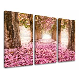 Obraz na stěnu 3 dílný STROMY ST008E30